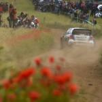 Rally Poland 2014